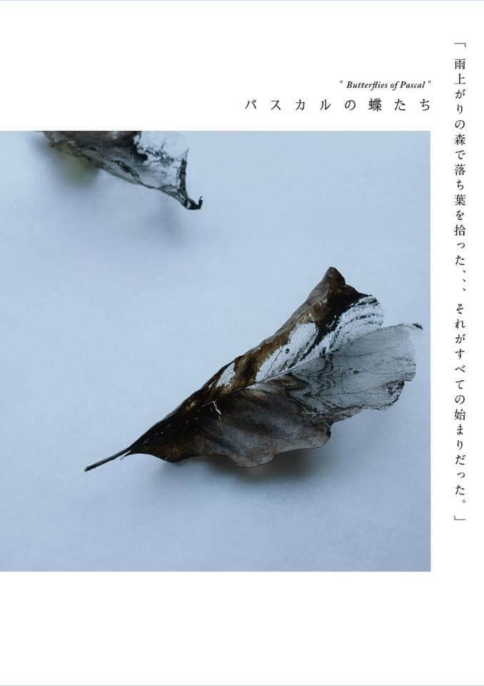 10/16-24「パスカルの蝶たち展」